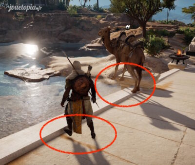 Assassin's Creed® Origins : bug visuel
