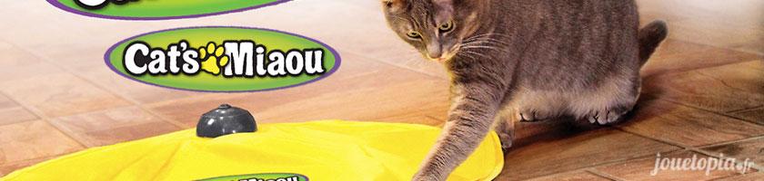 CatsMiaou, un nouveau jouet pour chats
