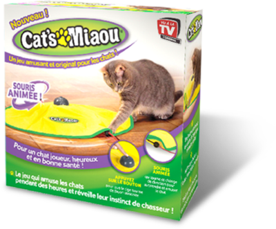 jouet chat qui tourne