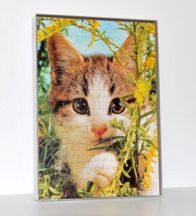 Jeu puzzle chat 50 pièces